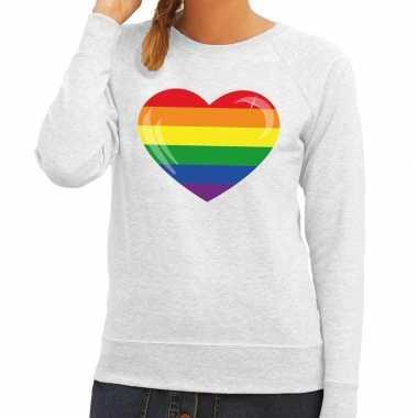 Gay pride regenboog hart sweater grijs dames