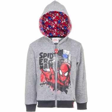 Spiderman sweater rits grijs
