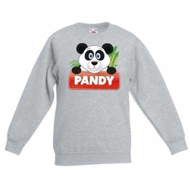 Sweater grijs kinderen pandy panda