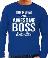 Awesome boss baas cadeau sweater blauw heren