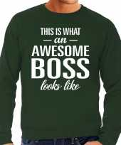 Awesome boss baas cadeau sweater groen heren