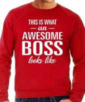 Awesome boss baas cadeau sweater rood heren