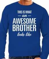 Awesome brother broer cadeau sweater blauw heren