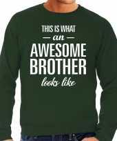 Awesome brother broer cadeau sweater groen heren