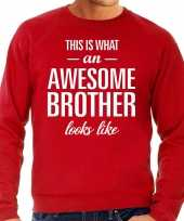 Awesome brother broer cadeau sweater rood heren