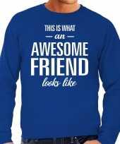 Awesome friend vriend cadeau sweater blauw heren