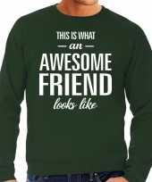 Awesome friend vriend cadeau sweater groen heren
