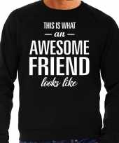 Awesome friend vriend cadeau sweater zwart heren