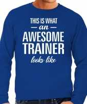 Awesome geweldige trainer cadeau sweater blauw heren