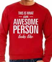 Awesome person persoon cadeau sweater rood heren