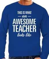 Awesome teacher leraar cadeau sweater blauw heren