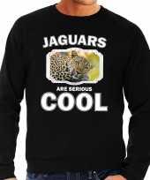 Dieren luipaard sweater zwart heren jaguars are cool trui